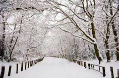 N Ennay Nevar Snow