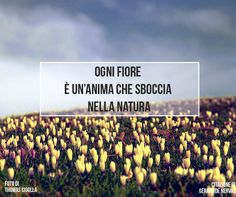 Quote by Gérard De Nerval #quotes #quote #aforismi #nature #natura #flowers…