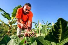 Deputado comemora aprovação da renegociação das dívidas dos agricultores do Nordeste