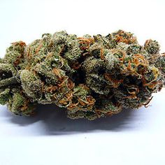 Hybrid Archives - Page 2 of 2 - Global Weed Shop Weed Buds, Herb Vaporizer, Weed Strains, Buy Edibles Online, Weed Edibles, Seeds For Sale, Buy Weed, Thc Oil