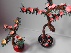 Micutii mei bonsai!