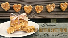 Homemade Peanut Butter and Sweet Potato Treats for Chickens and Dogs | Fresh Eggs Daily®