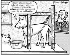 #humor #`psicologia