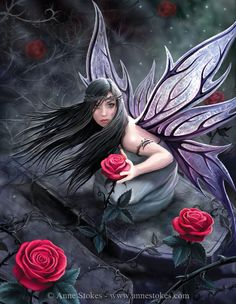 """Anne Stokes Design Rose Fairy Canvas Fantasy Art Wall Plaque: Stunning artwork """"Rose Fairy"""" designed by the talented Anne Stokes. Canvas picture stretched over wooden frame. Measures approx 10 x 7 Supplied sealed with hanging fittings. Anne Stokes, Elfen Fantasy, Fairy Pictures, Gothic Pictures, Love Fairy, Sad Fairy, Beautiful Fairies, Beautiful Live, Fantasy Kunst"""