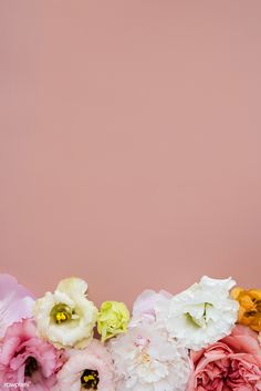 Beautiful lisianthus flowers background design | premium image by rawpixel.com / Jira Flower Backgrounds, Flower Wallpaper, Phone Backgrounds, Mobile Wallpaper, Wallpaper Backgrounds, Fresh Flowers, Beautiful Flowers, Lisianthus Flowers, Pool Images