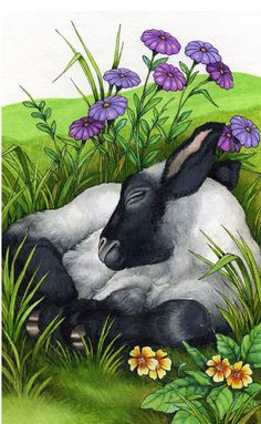 Robin James, Illustrator of Serendipity Books.   ~Illustrations ...