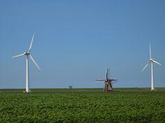 Het landschap bij Marrum. In de verte de zeedijk met het Tempeltje. Friesland. The Netherlands  Eigen foto.