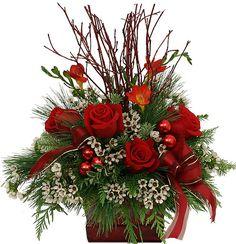 Christmas Flowers | Canada Flowers > Christmas Flowers > Arrangements >…