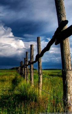 ♔ meadow-fence-clouds