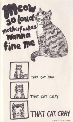 Meow so much - kitties in paris