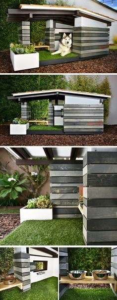 Amazing dog house... I think I will have to get this for my little guy.