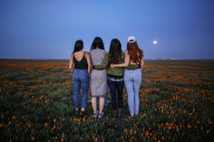 The Stumbleweeds ( Antelope Valley Poppy Reserve, Poppies, Channel, Public, Facebook, Photo And Video, Couple Photos, Videos, Check