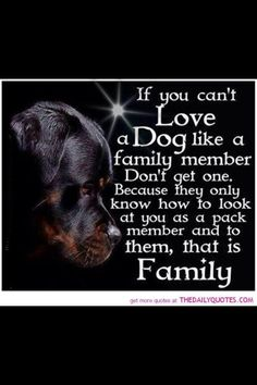 So true! And I love the Rottweiler! Even better! Dog Quotes, Animal Quotes, Life Quotes, Family Quotes, Great Dane Quotes, Great Dane Facts, Animal Poems, Pitbull Terrier, Bull Terriers