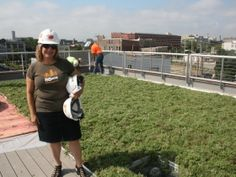 Mary Louise Mussoline on the new green roof at 88Nine Radio Station in Milwaukee, Wisconsin.  The green roof can last indefinitely with proper care.