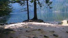 Čertovo jezero, Šumava
