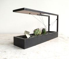 Modern, Modular Terrariums for the 21st Century — Plant-In City