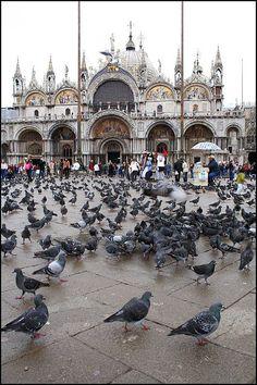 San Marco, Venezia, Italy,