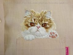 2f Embroidery Art, Embroidery Stitches, Embroidery Designs, Crazy Cat Lady, Crazy Cats, Flower Prints, Cute Cats, Needlework, Cross Stitch
