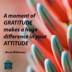 make gratitude your attitude essay Gratitude is a way for people to appreciate what they have instead of always reaching for something new in the hopes it will make them happier, or thinking they can't feel satisfied until every physical and material need is met.