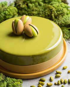 Modern desserts: dark chocolate pistachio mousse cake from French chef in Hong K. Modern desserts: dark chocolate pistachio mousse cake from French chef in Hong Kong Gourmet Desserts, Fancy Desserts, Food Cakes, Plat Halloween, Chocolate Hazelnut Cake, Cake Recipes, Dessert Recipes, Pistachio Cake, Mousse Cake