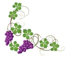 grape vines image 5 clipart free clip art images clip art rh pinterest com grape vine corner clip art grape vine clip art images