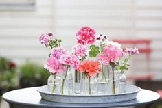 Gerani: i fiori da balcone per eccellenza