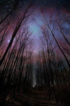 blue purple night sky