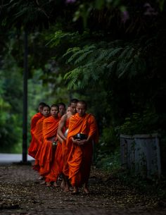 Photograph collecting alms by hamni juni on Buddha Buddhism, Buddhist Monk, Buddha Zen, Tibet, Nepal, Laos, Yogi Tattoo, Vietnam, Thai Monk