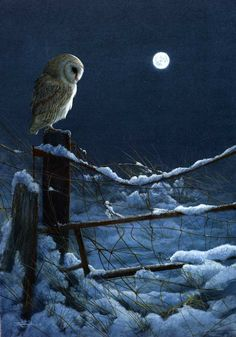 Owl painting by Jeremy Paul