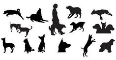 siluetas de gatos y perros