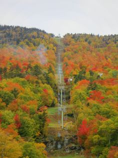 Mad River Glen: Ski It If You Can!