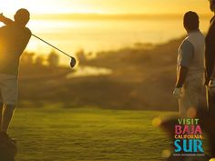 Many Signature golf courses to play in Cabo San Lucas Mexico. If your an avid or even an amateur golfer you will love to play the courses of Cabo.   www.conniemex.com SNELL REAL ESTATE 480-393-0639