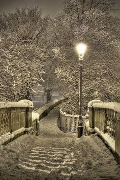 Snowy England Night - it reminds me off the lion the witch and the wardrobe.