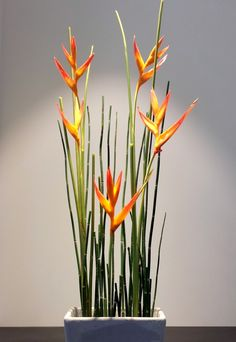 Ikebana Paris Maitre art floral japonais, decoration evenementielle, créations…