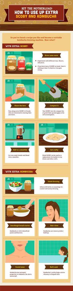 Uses for extra kombucha                                                                                                                                                                                 Mais