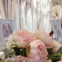 About Us - Elizabeth Kate Bridal, Designer Wedding Dress Boutique Wedding Dress Boutiques, Designer Wedding Dresses, Crystal Chandelier Lighting, Free Park, Stella York, On The High Street, Dream Dress, Interior And Exterior, Boho Chic
