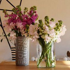 ピンポンなったらフラワーアーティストのTR3がお花持ってきてくれたよ。  せっかくなのでお願いして挿して頂きました。TR3が挿すと本当にすてき!  ストックとスイトピーは私はしない組み合わせ、しかもスイトピーはこう挿すのかー!ステキー!  もう春がきたみたい!  @studioisla  #aoshimabeach#flowerstagram#flower#matthiolaincana#lathyrusodoratus#surfing#surf#beachlife#boconcept#flowervase#springhascome#botanical#driftwood  #青島ビーチ#アオシマ#サーフィン#波乗り#フラワーアーティスト#フラワー#ストック#スイトピー#ピンク#春#ビーチライフ