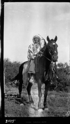 Native American Images, Native American History, Native American Indians, Indian Pictures, Indian Pics, Native American Photography, Native American Spirituality, War Bonnet, Native Art