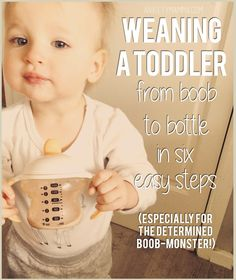 Weaning a toddler from Breastfeeding