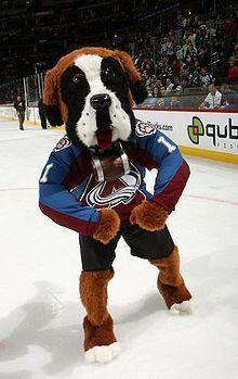 Mascottes canines et hockey