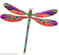 This coloured-in image of a dragonfly taken out of Animal Kingdom shows the vibrant level ...