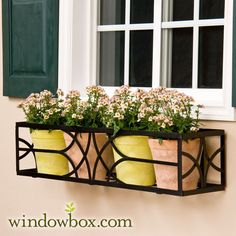 Pick our 24 Inch Simple Elegance window box cage. The square design means you can place pots or a window box liner inside and achieve stunning results. Wrought Iron Window Boxes, Metal Window Boxes, Window Box Flowers, Metal Flowers, Flower Boxes, Garage Windows, Iron Windows, French Windows, Modern Windows