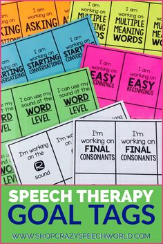 Help your students become more aware of their speech and language targets with these goal tags!