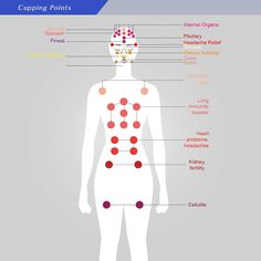 Veracious Cupping Points Chart Pdf 2019 Cupping Massage, Acupressure Treatment, Reflexology Massage, Face Massage, Cupping Therapy, Body Therapy, Massage Therapy, Craniosacral Therapy, Trigger Points
