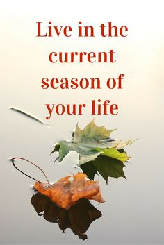 Live in the current season of your life