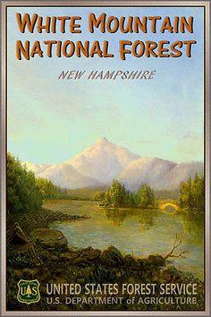 WHITE MOUNTAIN NATIONAL FOREST Poster Original New Hampshire Retro Art Print 144