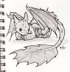 How to Train Your Dragon--Night Fury