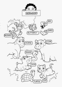 47 Super Ideas For English Games For Kids Activities Kindergarten Kids English, English Class, English Lessons, Learn English, English Activities For Kids, Lessons For Kids, English Language Learning, Teaching English, Ingles Kids
