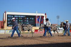 Extreme Racing 2013 at OKC's Remington Park!
