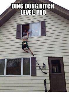 DoorBell Prank College Prank, Door, Funny, House, Windows